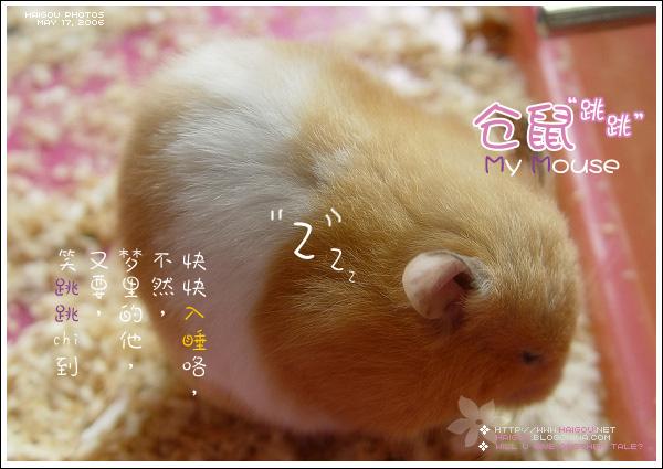 Pic_06_05_18_mouse_e